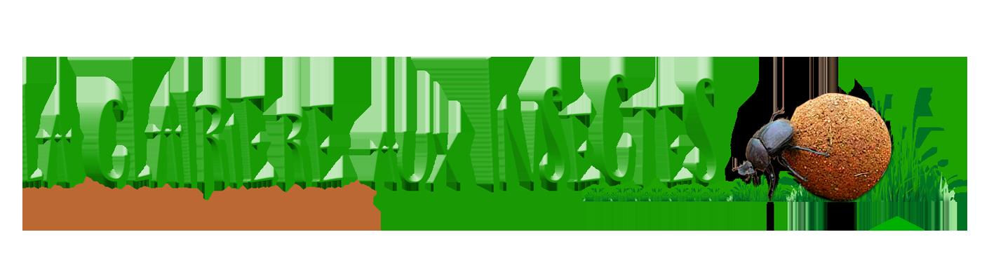 """Résultat de recherche d'images pour """"logo la clairière aux insectes"""""""